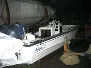Boston Whaler - Before